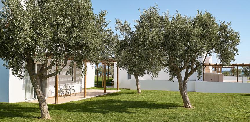 06-Oliva-Bungalow-Shared-Patio-Accommodation-Peloponnese