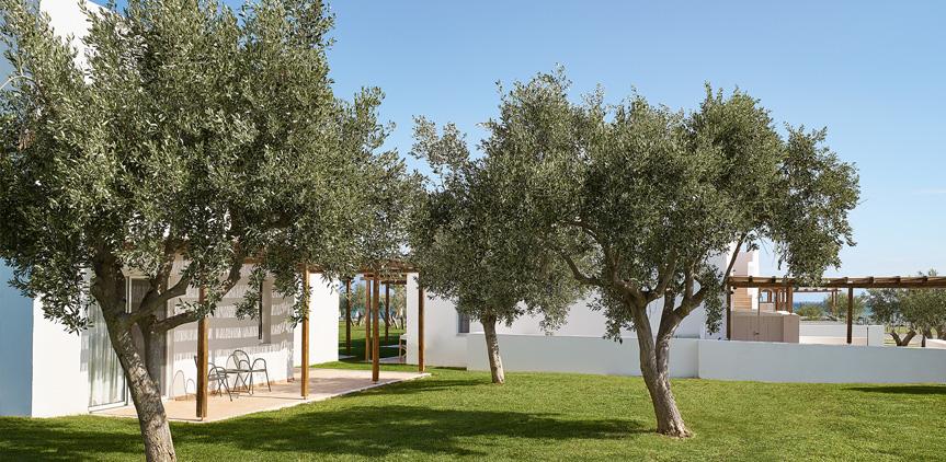 04-Bungalows-Garden-Area-Casa-Marron-All-inclusive-Hotel