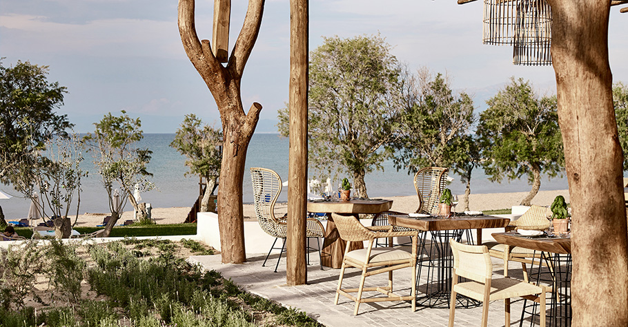 casa-marron-faros-greek-restaurant