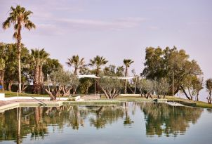 09-Gorgeous-landscaped-gardens-beside-the-pool