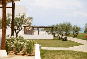 14-olive-tree-ornamented-gardens-encircling-the-bungalows
