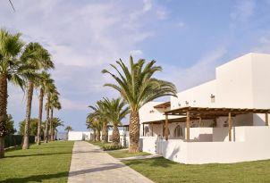 18-Stunning-Palm-fringed-garden-landscape-surrounding-bungalow-complex